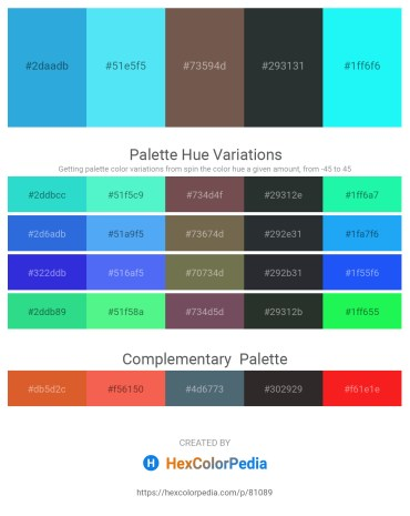 Palette image download - Dodger Blue – Light Sky Blue – Dim Gray – Dark Slate Gray – Aqua