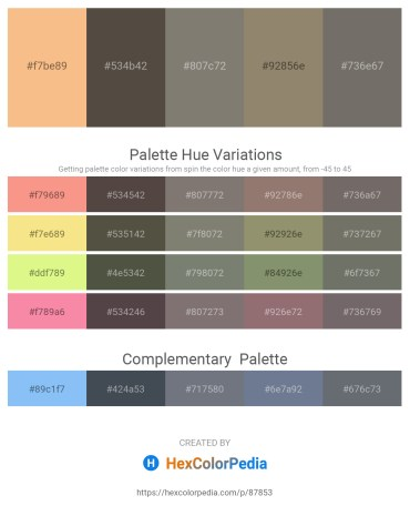 Palette image download - Sandy Brown – Dim Gray – Gray – Gray – Dim Gray