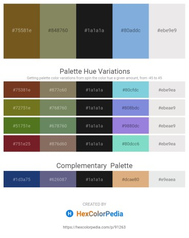Palette image download - Sienna – Gray – Black – Sky Blue – White Smoke