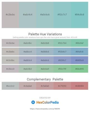 Palette image download - Silver – Dark Sea Green – Light Steel Blue – Light Steel Blue – Medium Aquamarine