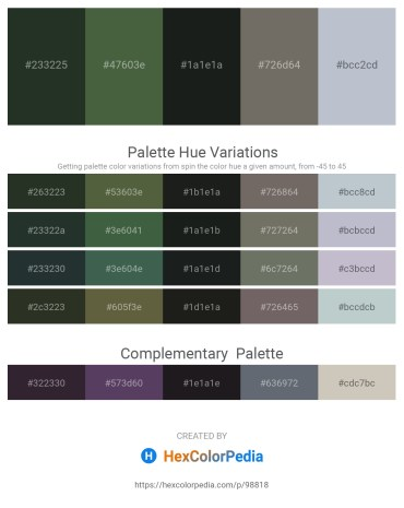 Palette image download - Dark Slate Gray – Dark Olive Green – Dark Slate Gray – Dim Gray – Light Steel Blue