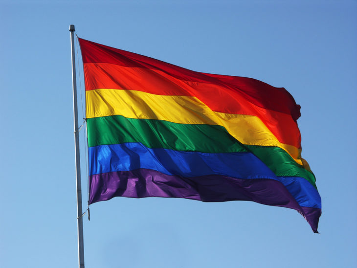 El Significado de la Bandera LGBT ha evolucionado, puesto que en un principio ésta tenía ocho colores en vez de los seis actuales.