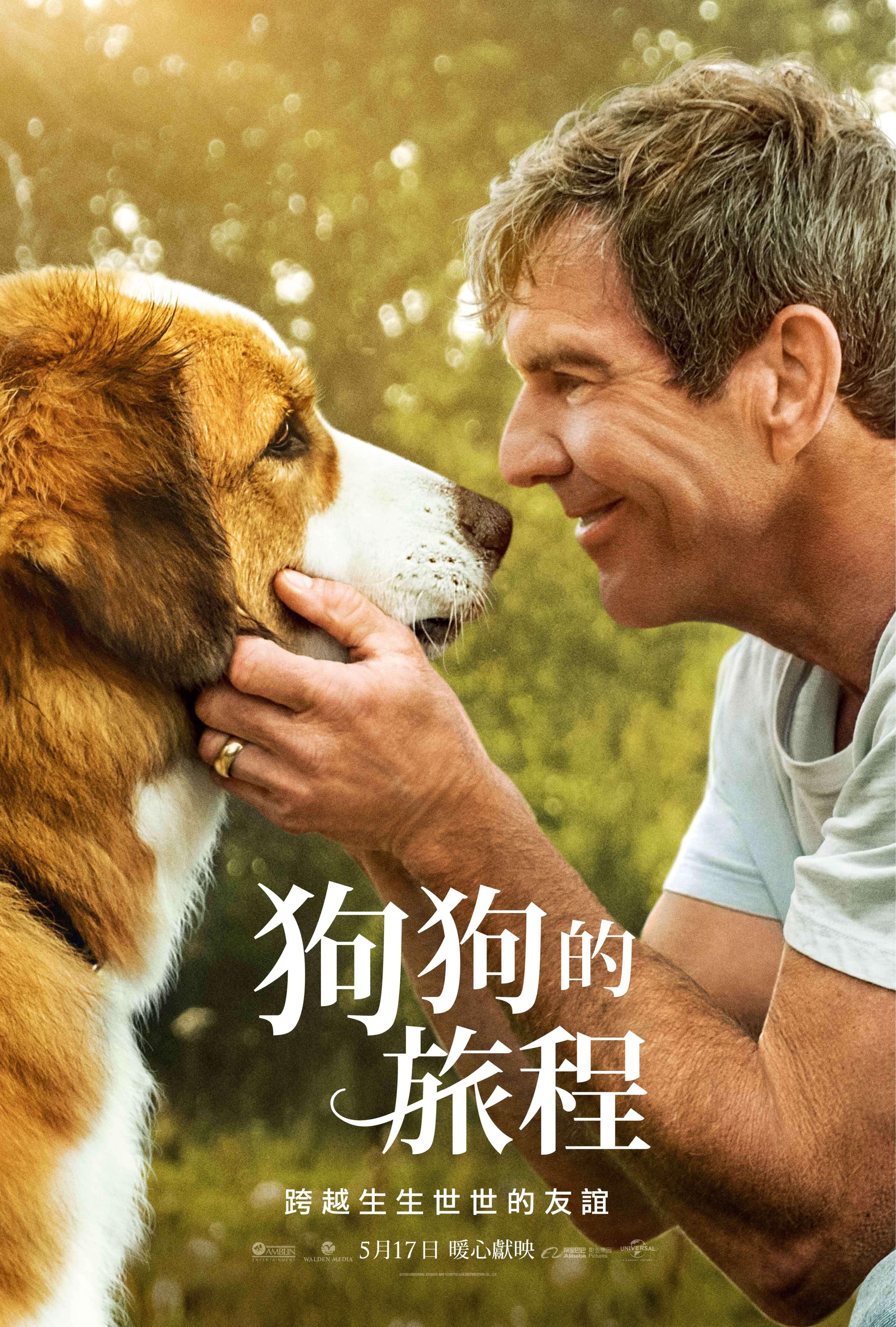 「狗狗的旅程」電影首映會 會員專屬贈票活動 - 勤美 誠品綠園道