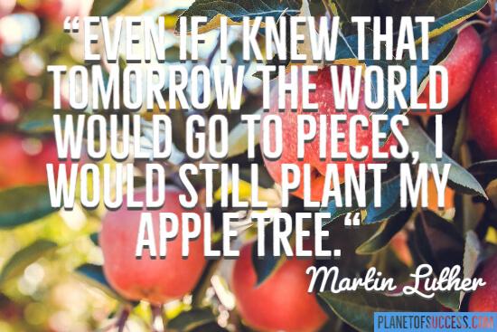 Plant my apple tree quote