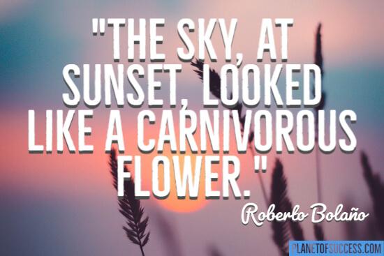 A carnivorous flower