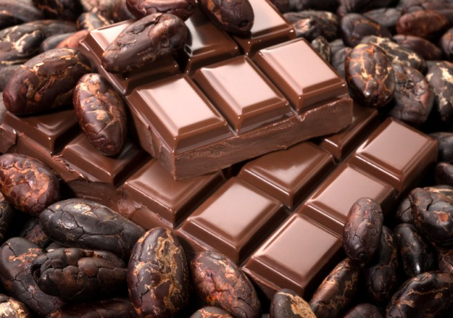 5 Chocolate Segments with Cocoa Beans
