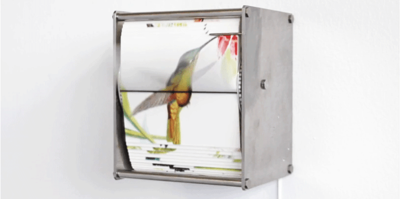 Bird flipbook 26.01.16.png