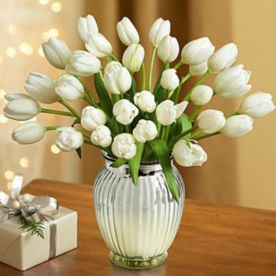 Snowflake Tulips.jpg