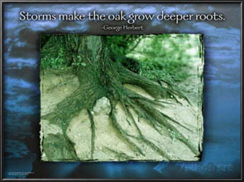 Deeper Roots.jpg