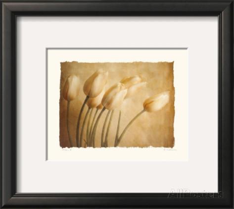 Soft & Lovely Tulips.jpg