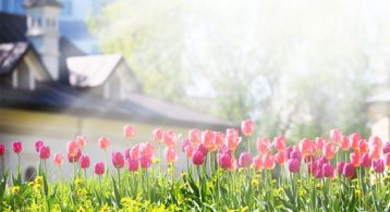"The Housing Market Will ""Spring Forward"" This Year! 