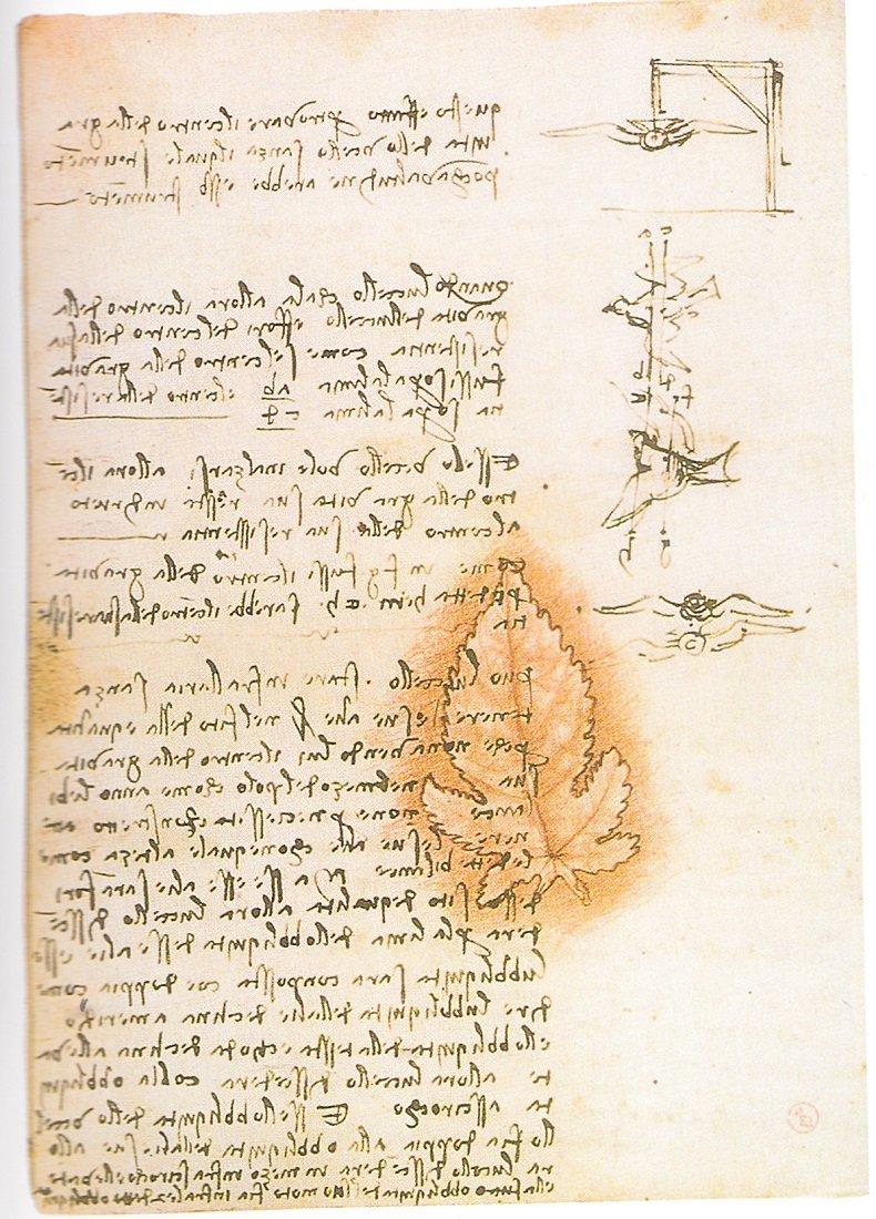 Citazioni Di Leonardo Da Vinci Sulla Pittura