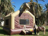 Pony Rides Arizona Ponies For Birthday Parties School Carnivals Company Picnics And Special Events In Arizona