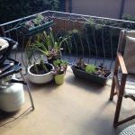 My Garden In A Box Balcony Experiment The Interiors Addict