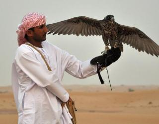 UAE_resorts_12