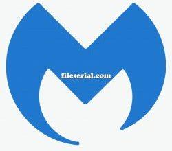 Malwarebytes 4.2.0.179 Build 1.0.1045 Crack + Key Full Version 2020