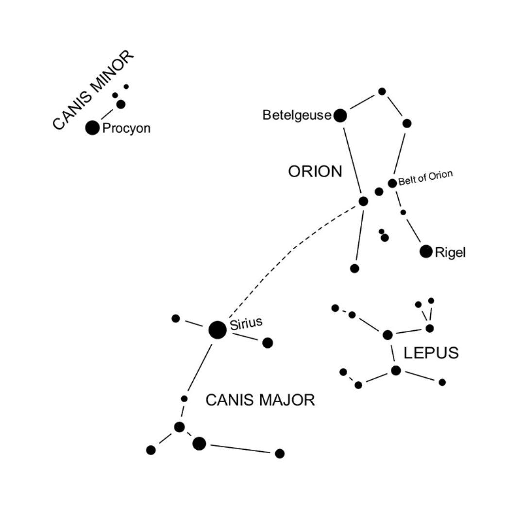 Skywatch Canis Minor Orion S Little Canine Helper