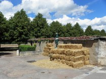 SEMUR-EN-AUXOIS: siano dla rycerskich rumaków / hay for knight horses