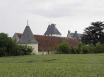 Pola wokół zamku
