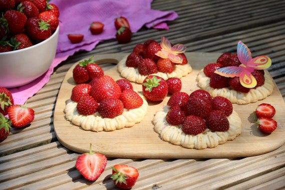erdbeeren1