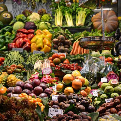 Die Reise quer durch unser Ernährungs-ABC