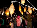 Cocoons 2011