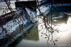 frozen-street-photos-czyli-zamrozony-wroclaw-15