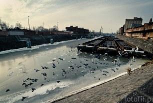 Wrocław port miejski Odra - Filip Głuch - Polish Street Photo