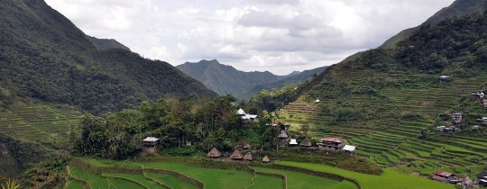 Rijstterrassen Batad Village - Luzon, Filipijnen