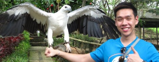 Philippine Eagle Center - Davao, Mindanao, Filipijnen
