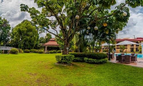 Tuin - Hotel M01, Cebu City