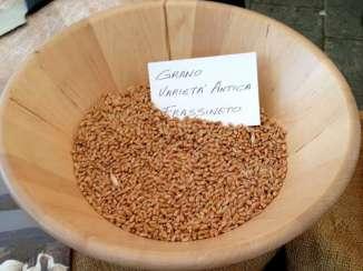 il-grano-frassineto
