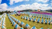 Tomorrowland-Easy-tent