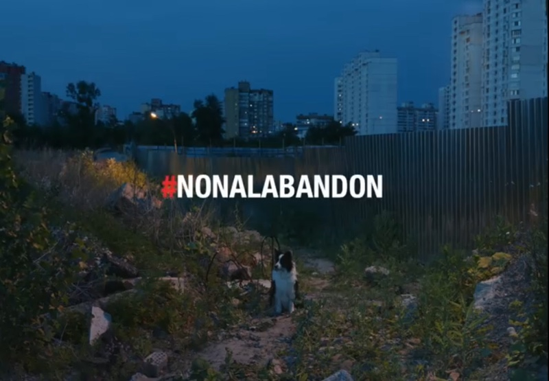 Video non a l abandon 2019 30 millions d'amis