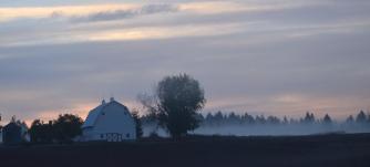 barn and fog