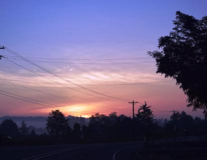 sun fog and Mt Hood