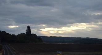 150902 sun view