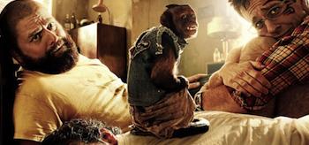 Bradley Cooper, Ed Helms, Zach Galifianakis, The Hangover 2 Movie Poster, 02