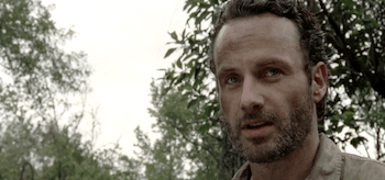 Andrew Lincoln The Walking Dead Seed