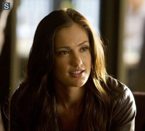 Minka Kelly Almost Human Beholder