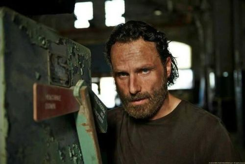 Andrew Lincoln The Walking Dead Season 5