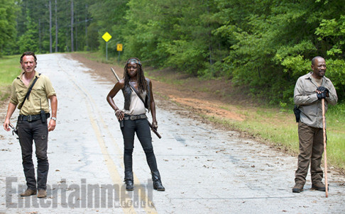 Andrew Lincoln Danai Gurira Lennie James The Walking Dead