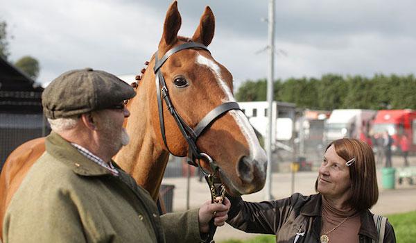 Dark Horse Trailer