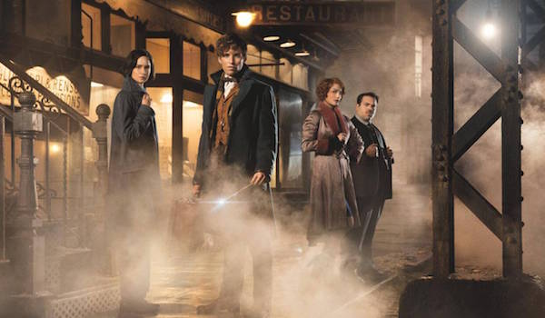 Eddie Redmayne Katherine Waterston Alison Sudol Dan Fogler Fantastic Beasts and Where to Find Them