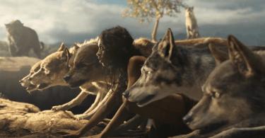 Rohan Chand Mowgli