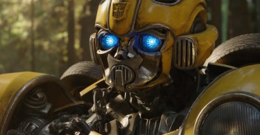 Sad Face Bumblebee