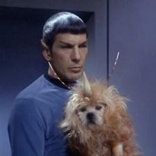 #171 – Mr. Spock