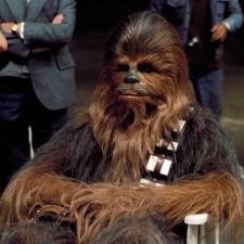 Fota – Chewbacca