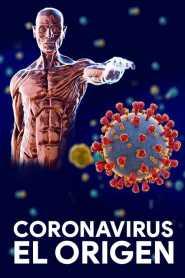 Coronavirus: El origen