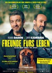 Freunde fuers Leben_poster_small
